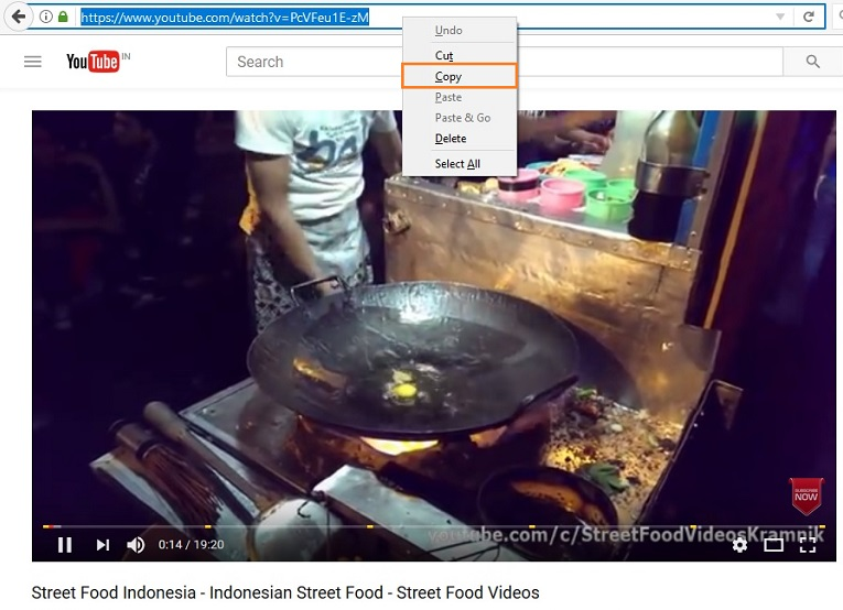 Download Subtitles in Indonesia - Copy YouTube Video URL